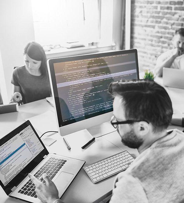 The custom software development process - introduction.