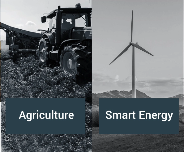 Experience in IoT applications for the agriculture and smart energy sectors.